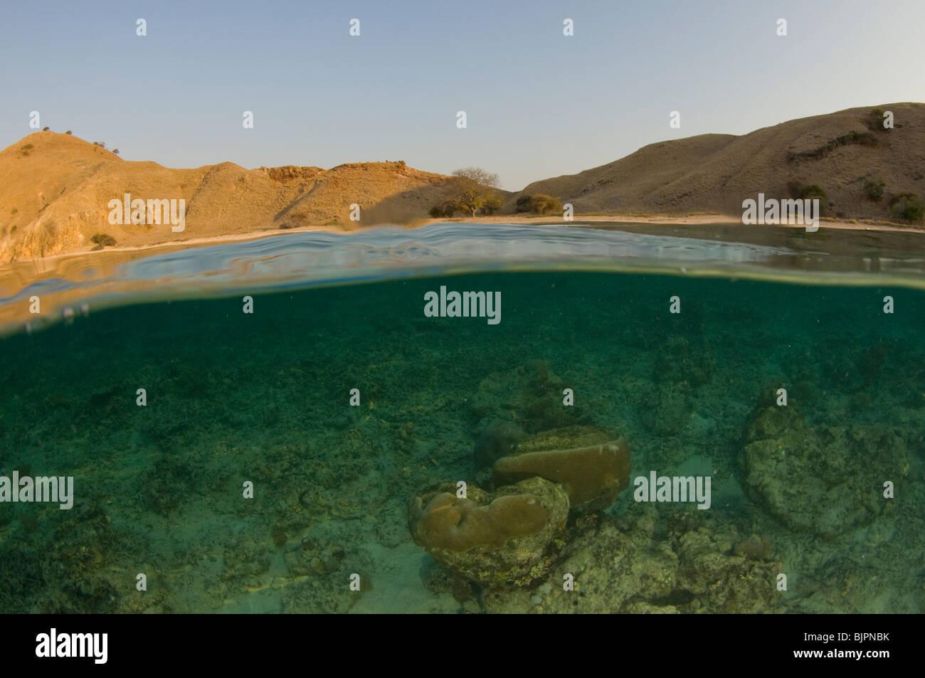 Island and coral reef split level, Komodo National Park, East Nusa Tenggara, Indonesia - Stock Image