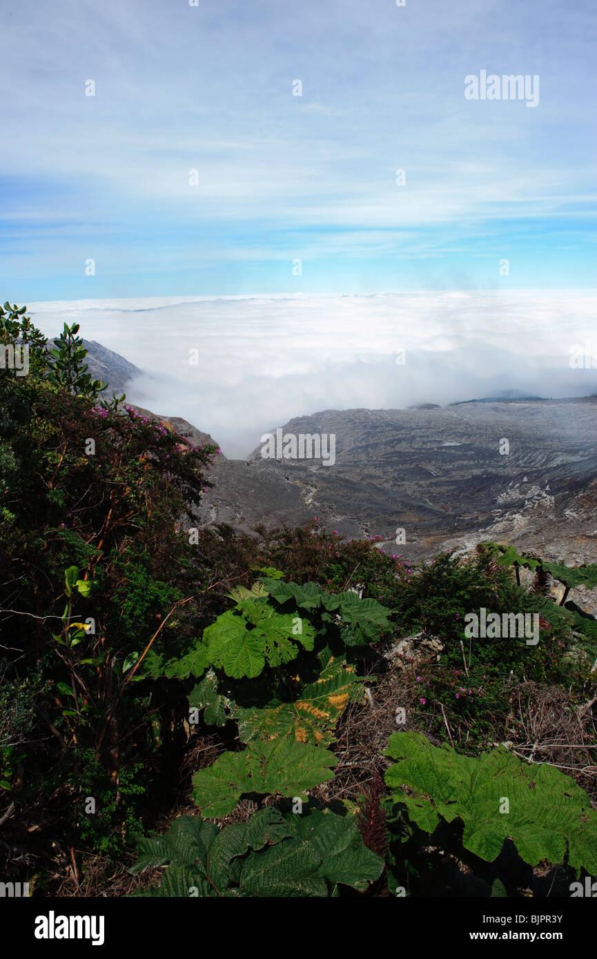 Poas Volcano Lava Fields - Stock Image