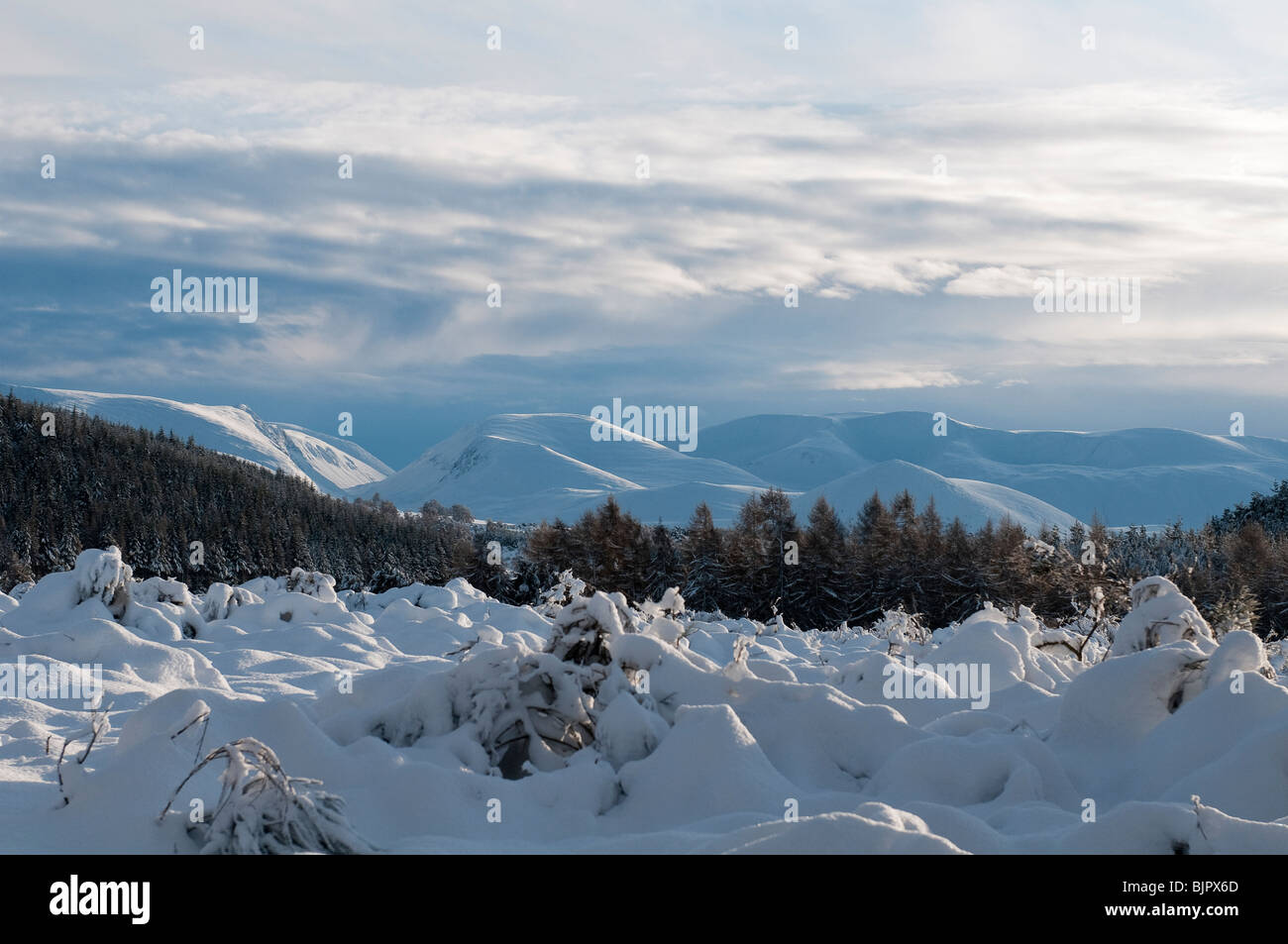 View of the snow covered Cairngorm mountains, Scotland - Stock Image