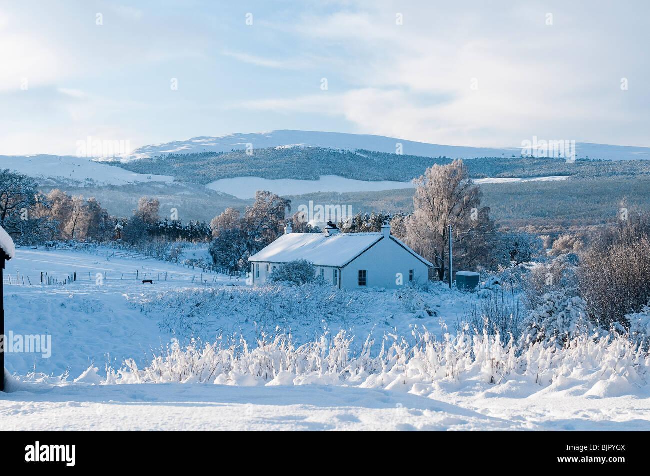 Croft in a snowy highland landscape, Scotland - Stock Image