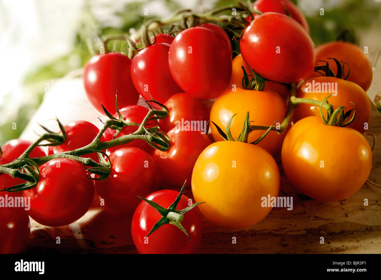 Selection of fresh red and yellow tomatoes and plum tomatoes food photography - Stock Image