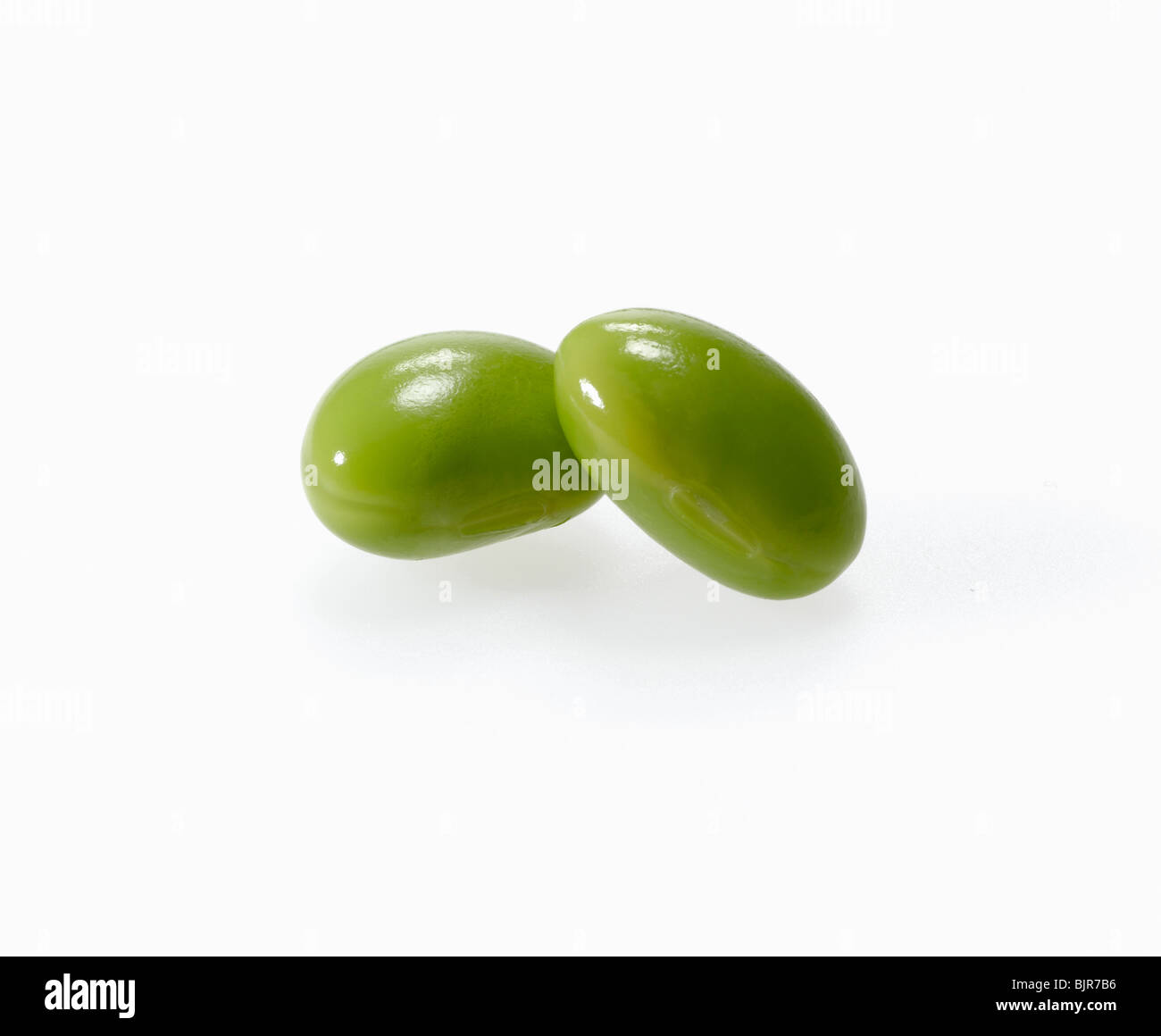 soy bean pod cut out on white background - Stock Image