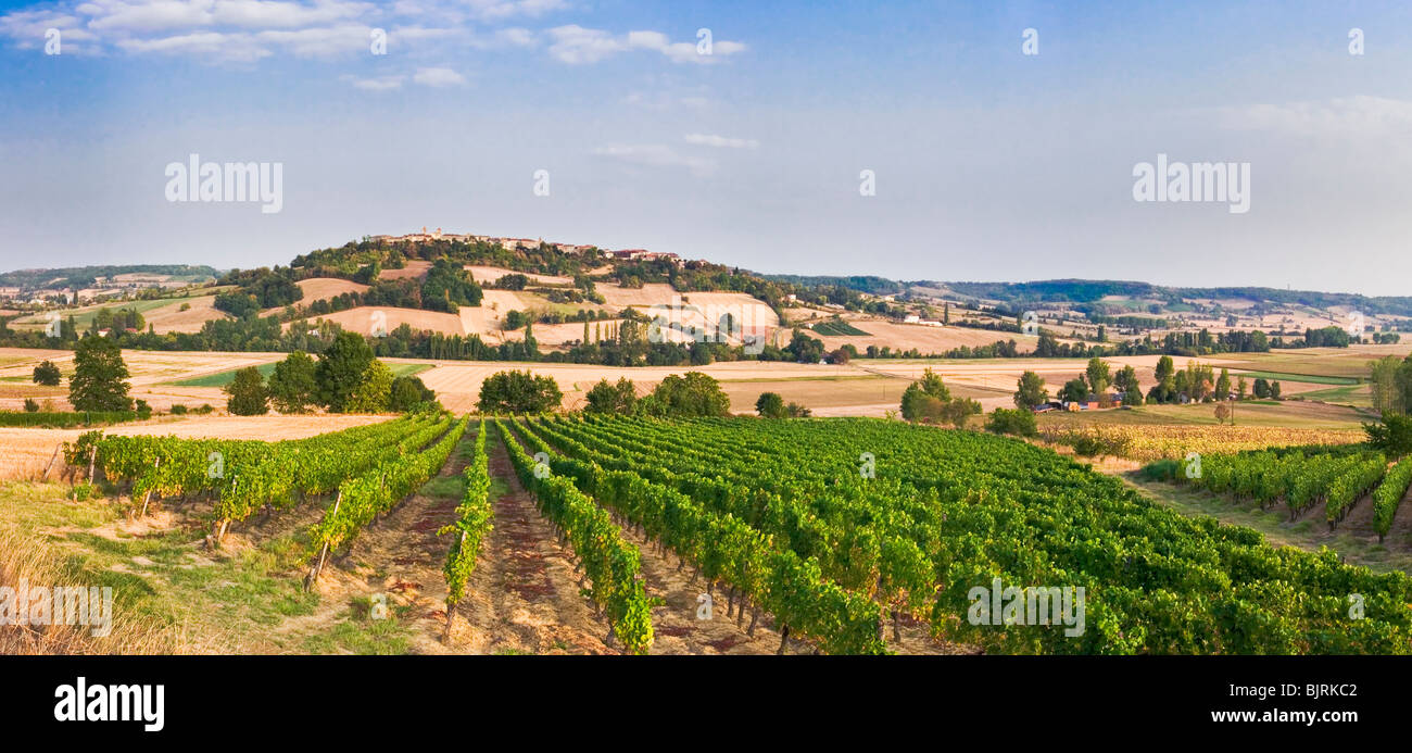 Vineyard in Southwest France with town of Lauzerte on the hill in Tarn et Garonne region, France, Europe - late - Stock Image