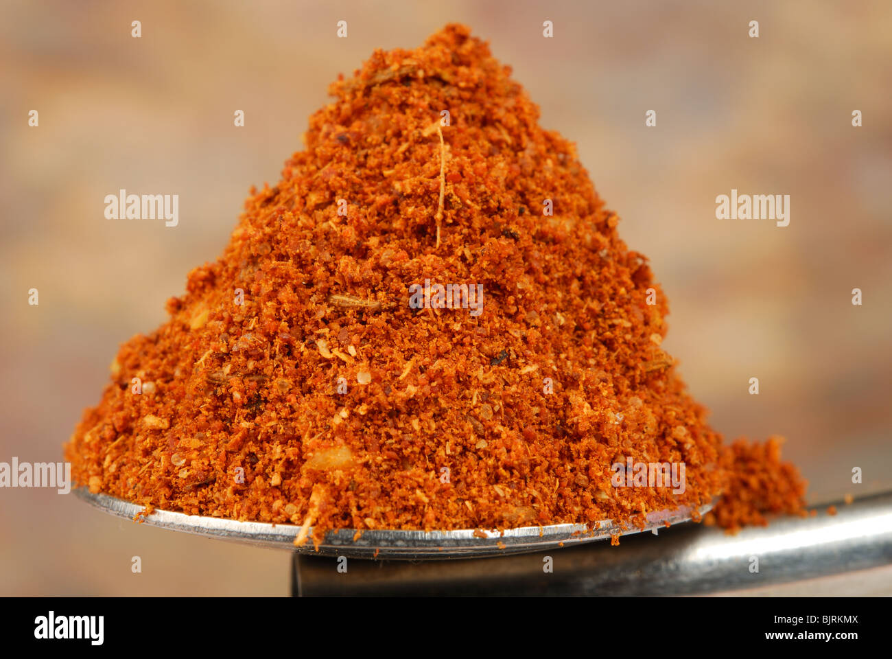 Roasted tandoori spice powder (coriander seed, cumin, garlic, chilli, ginger, salt, cardamom, bay, star anise, cinnamon) - Stock Image