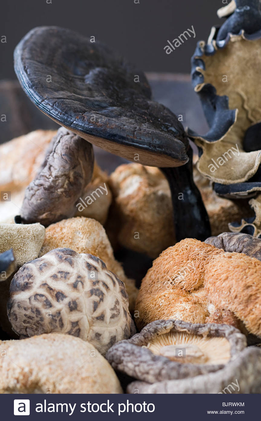 Dried mushrooms - Stock Image