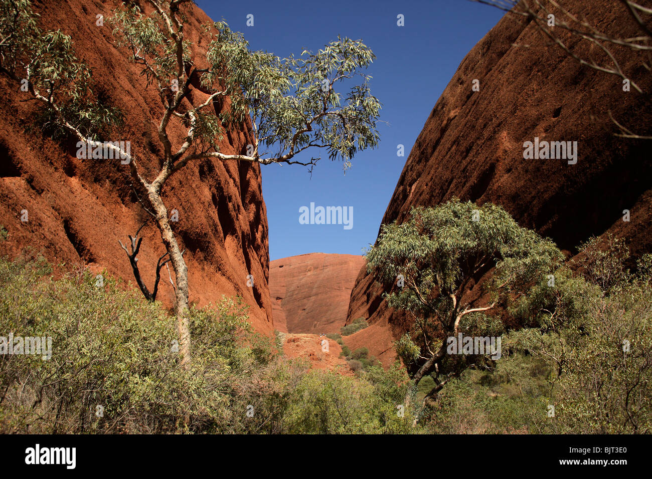 Valley of the winds at Uluru-Kata-Tjuta National Park, Northern Territory, Australia - Stock Image