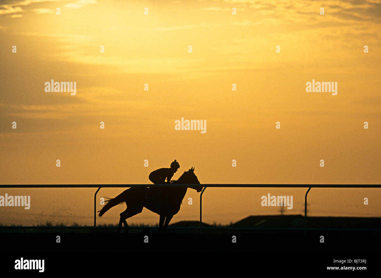 A silhouette of a jockey riding a horse - Stock Image