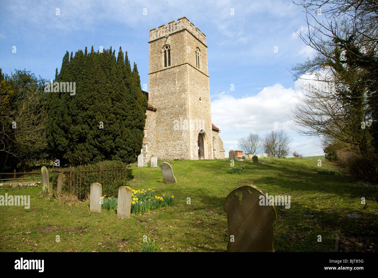 Tower and churchyard Church of St Botolph, Burgh, Suffolk - Stock Image