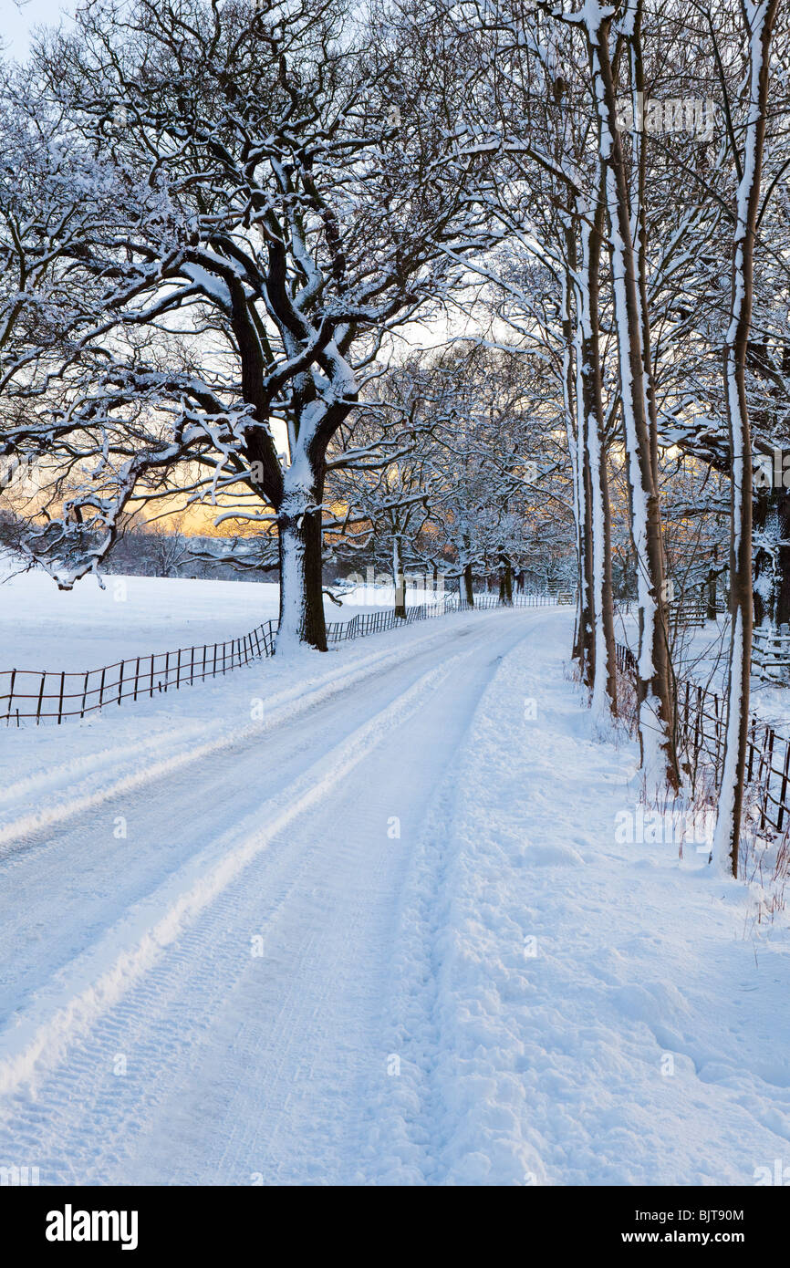 Dusk falling on an icy, snow covered Cotswold lane through parkland at Stanway, Gloucestershire - Stock Image