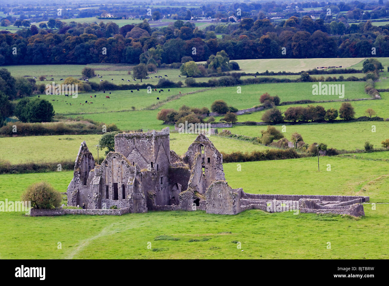 Cashel priory abbey Tipperary Ireland - Stock Image