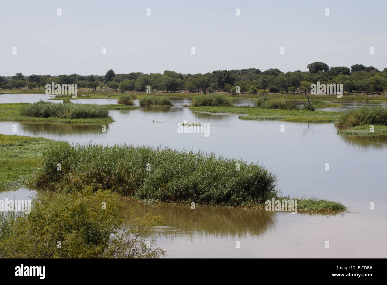 Looking across the cunene river towards Angola. Calueque, Cunene Province, Southern Angola, Africa. - Stock Image