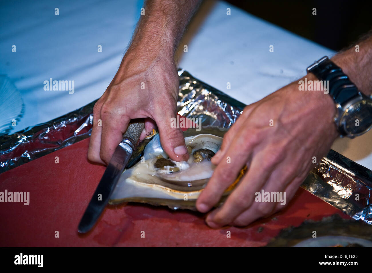 demonstration of a pearl shell opening and grading Western Australia Paspaley Pearl Farm - Stock Image