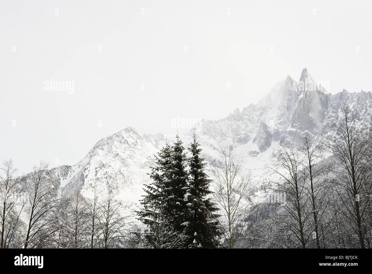 Trees and mountain in french alps Stock Photo