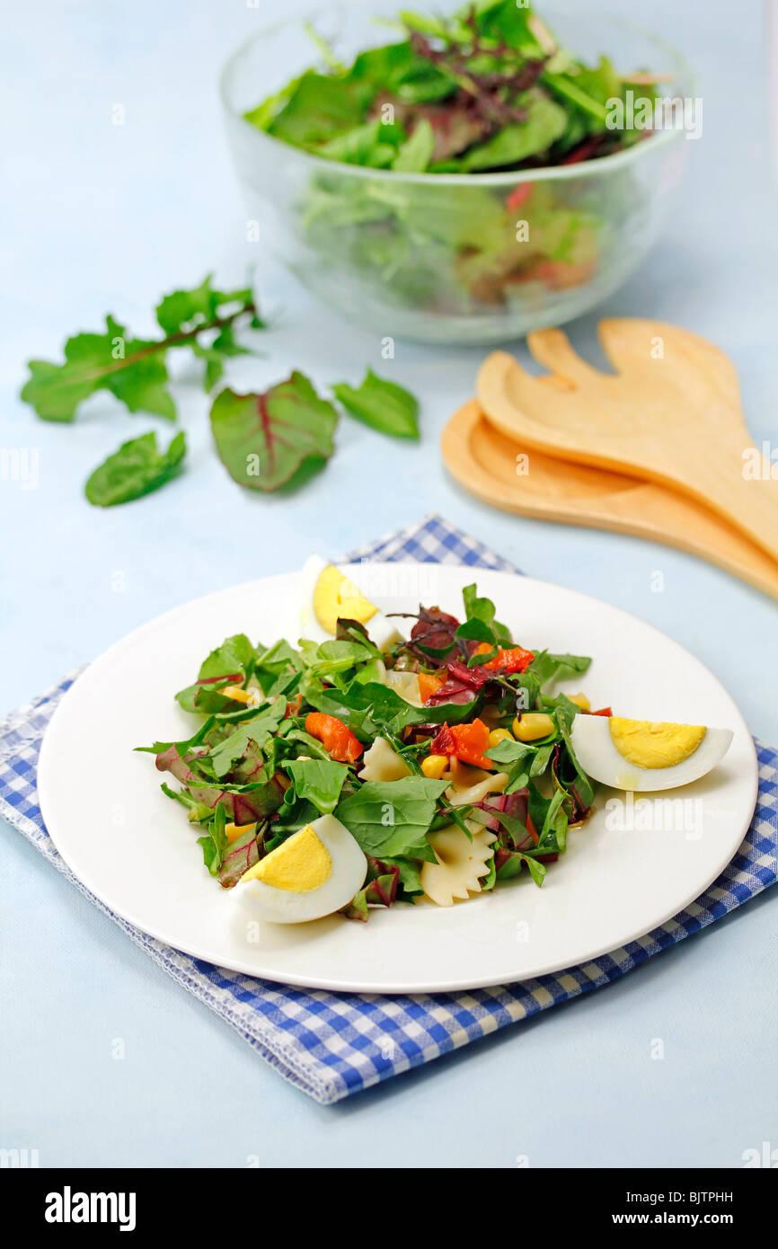 Mixed leaves salad. Step by step: PA48R0-PA48RA-PA48T1-PA4876 Stock Photo