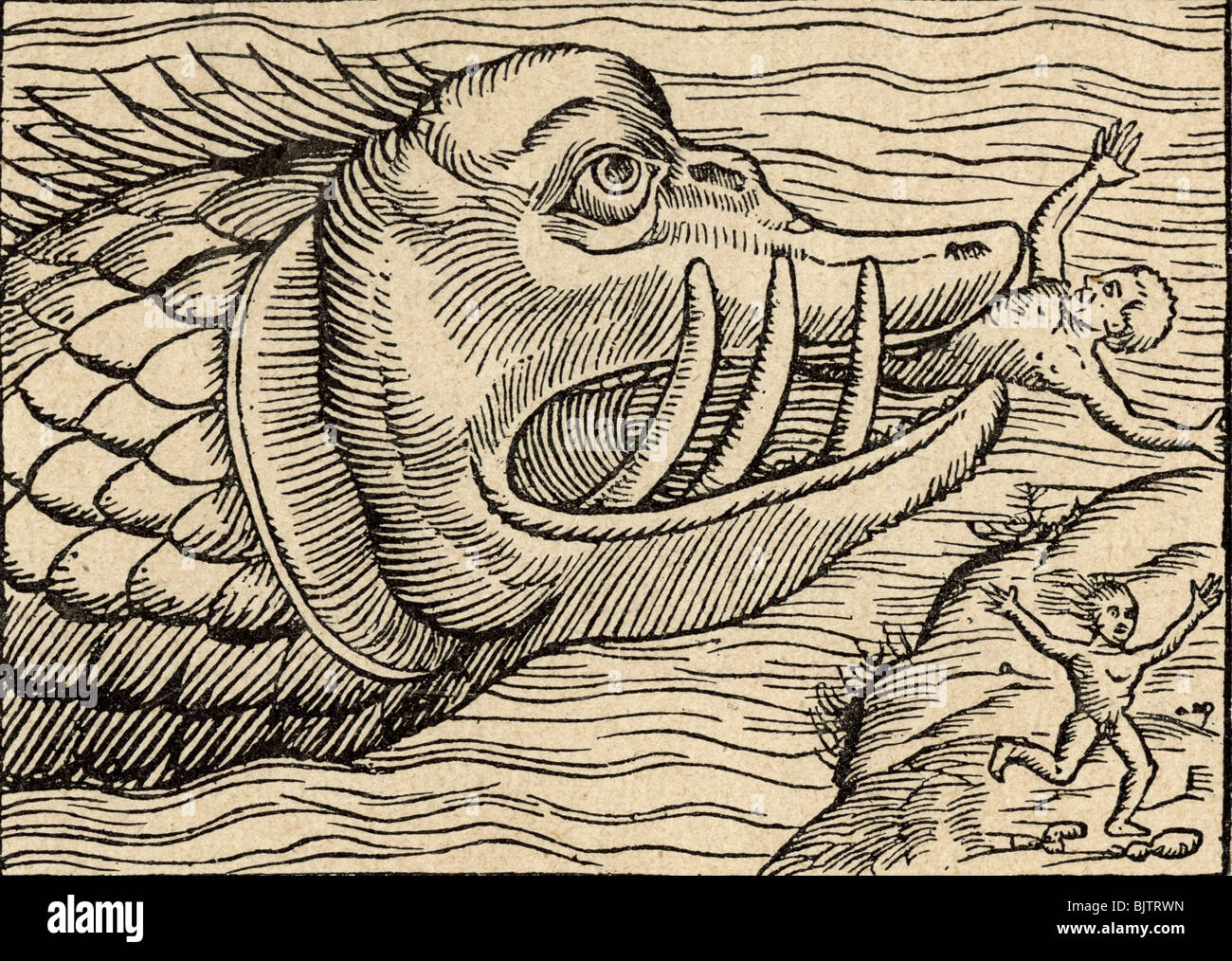 Zoology Mythical Creature Sea Monster Eating People Woodcut From Stock Photo Alamy