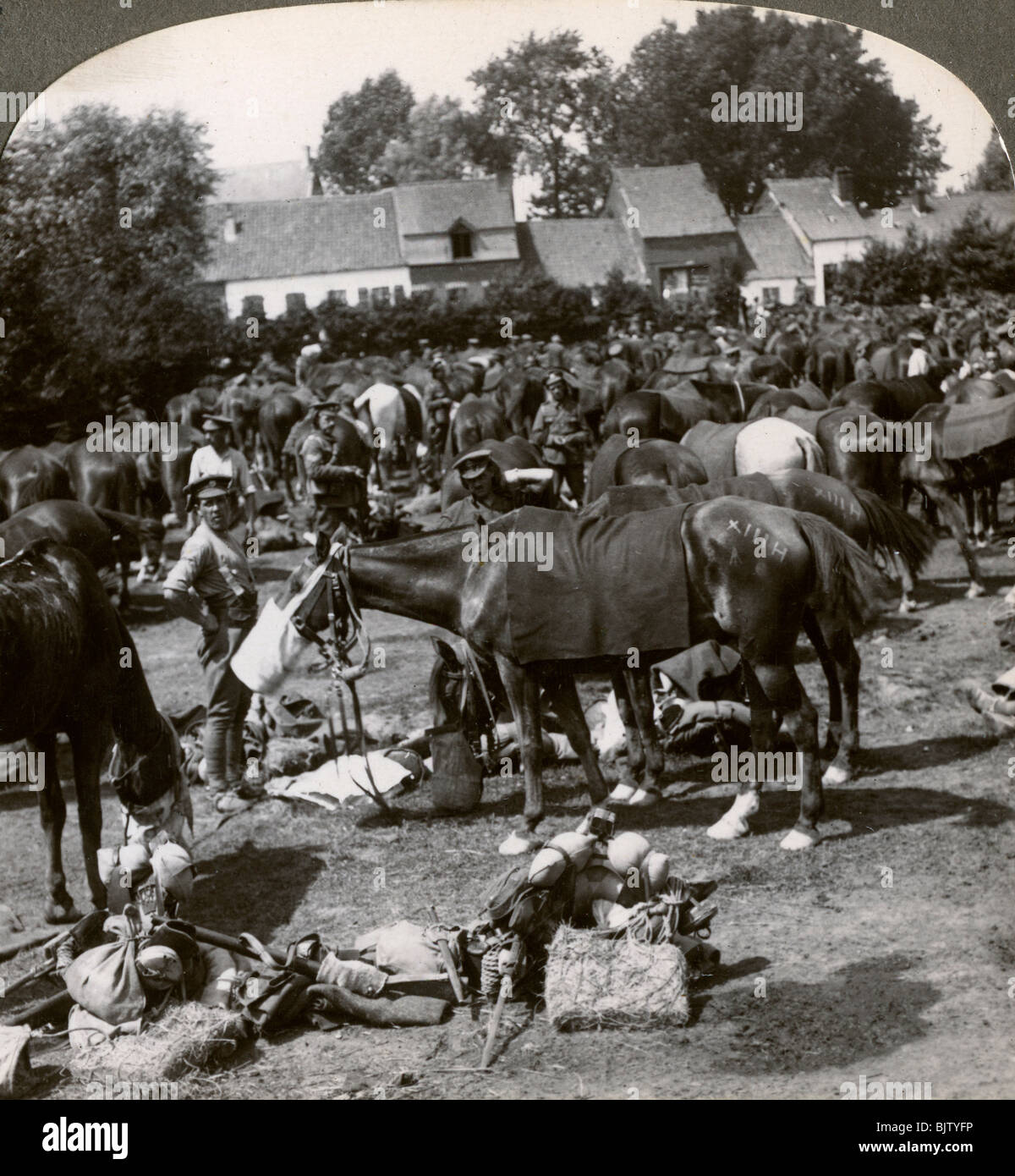 Troops feeding their horses and resting on the march, World War I, 1914-1918. - Stock Image