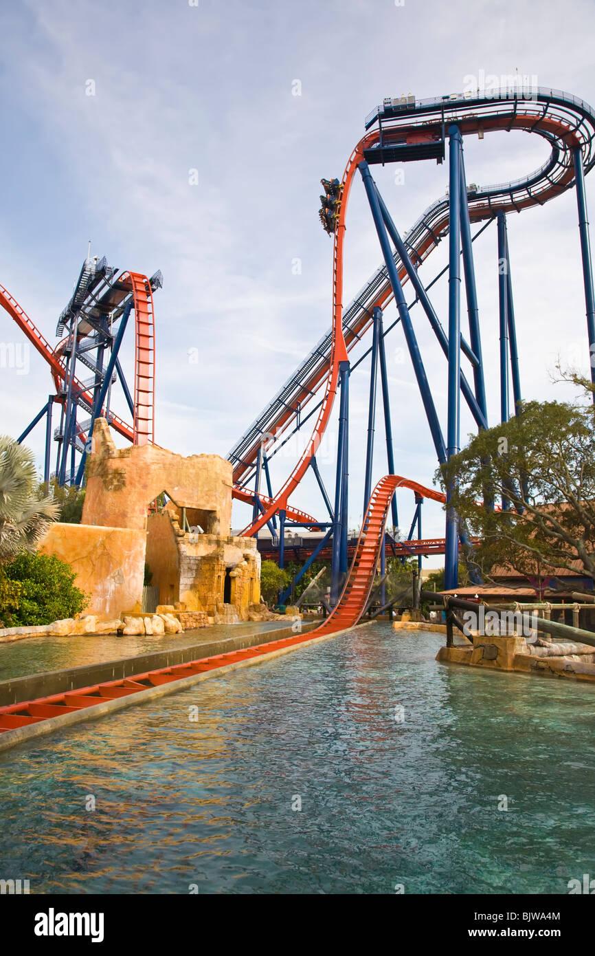 Sheikra Coaster At Busch Gardens In Tampa Florida Stock Photo Alamy