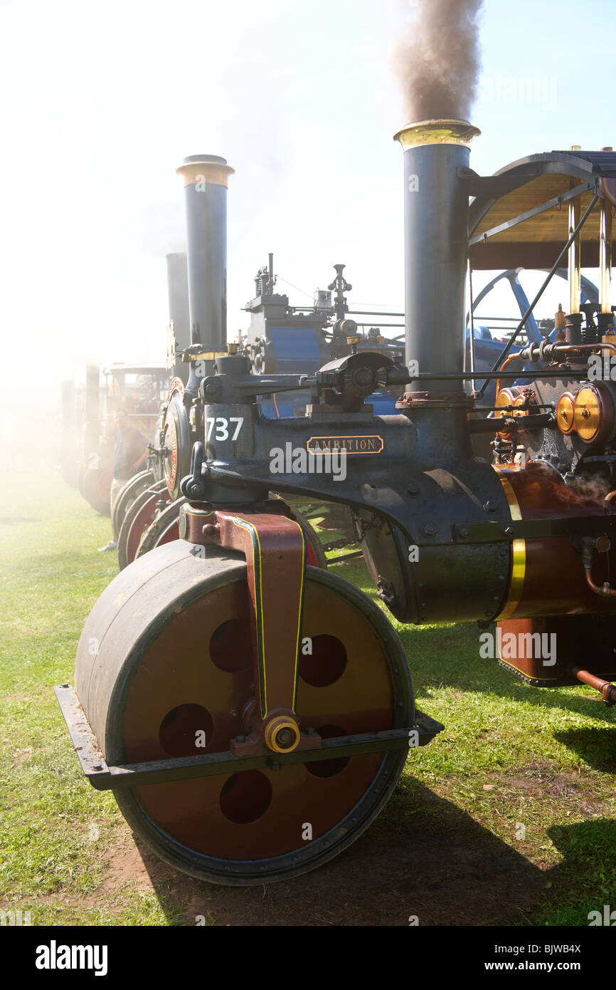 Steam Roller traction engines - Stock Image