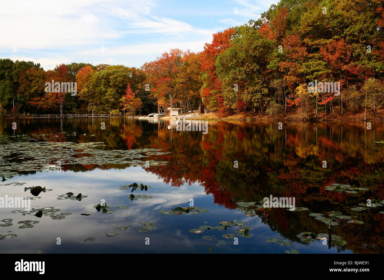 Autumn surrounds Lake Orbach in Staten Island's Greenbelt. - Stock Image