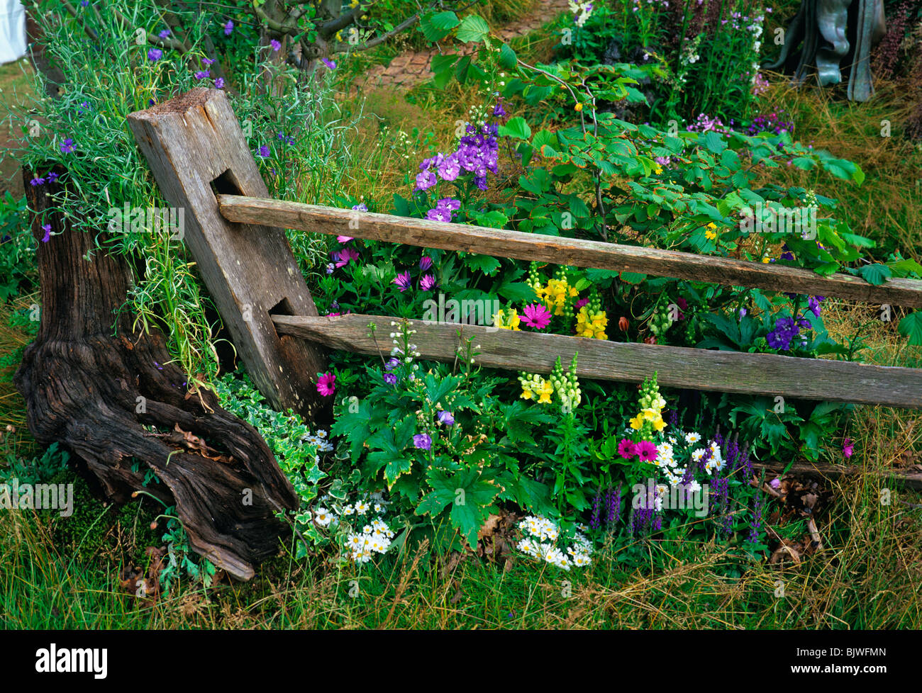 Corner Of A Cottage Garden With A Decorative Fence And Colourful Planting