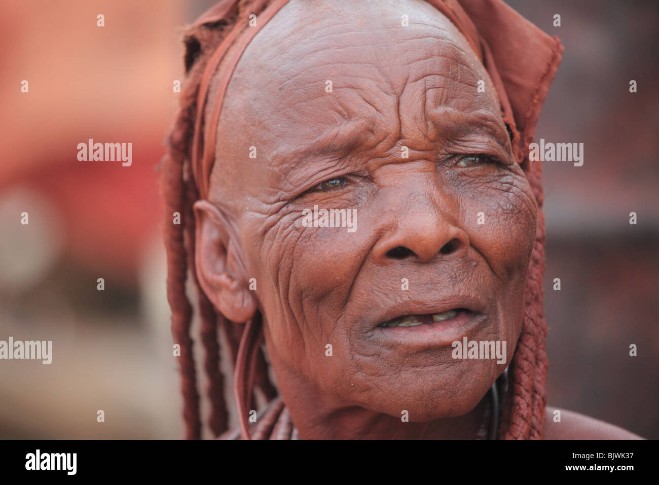 Wise Elder Himba Woman - Stock Image