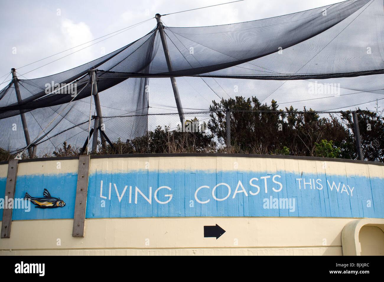 Living Coasts,Torquay - Stock Image