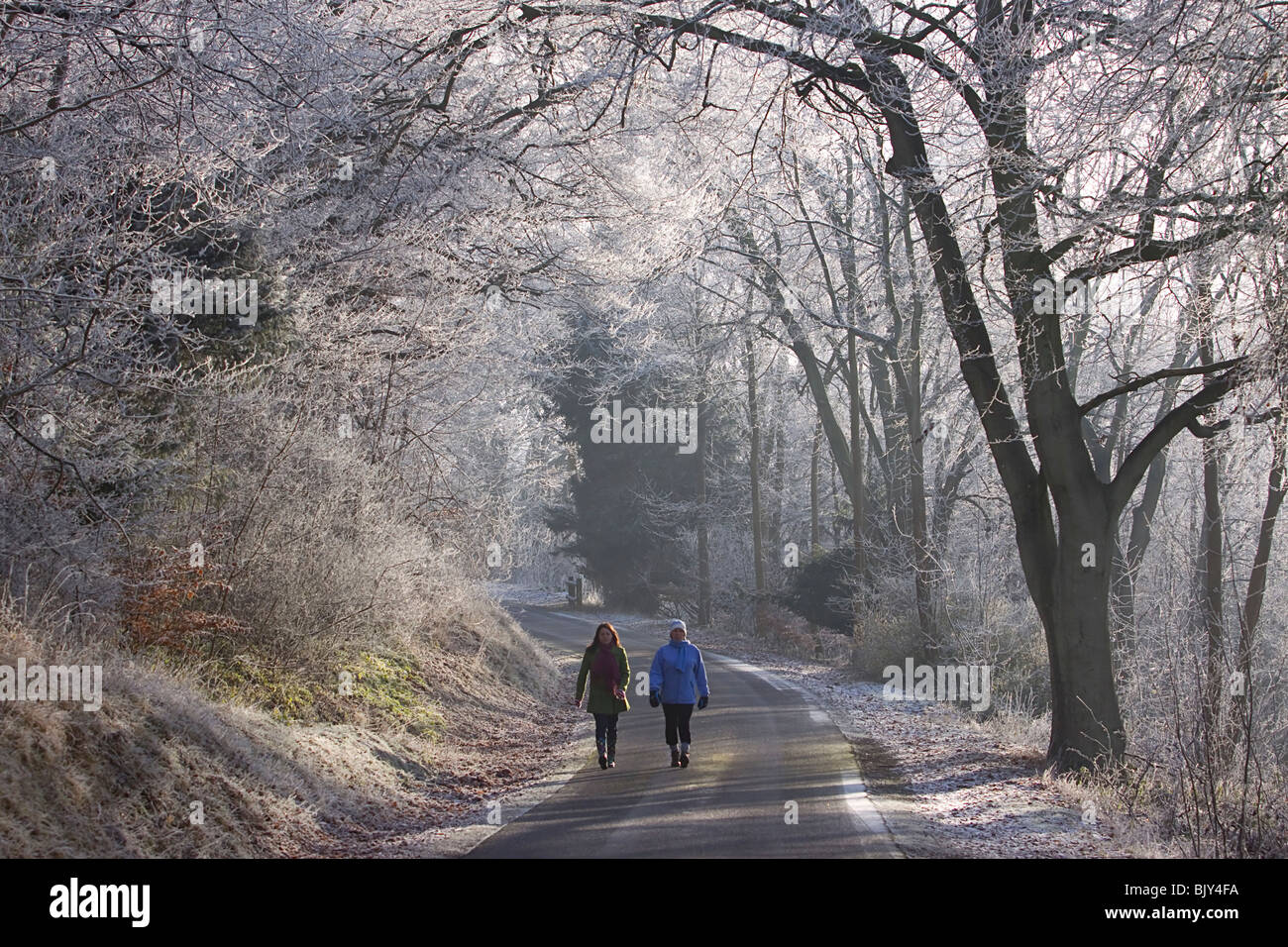 Chilterns frost walkers walking winter road cold - Stock Image