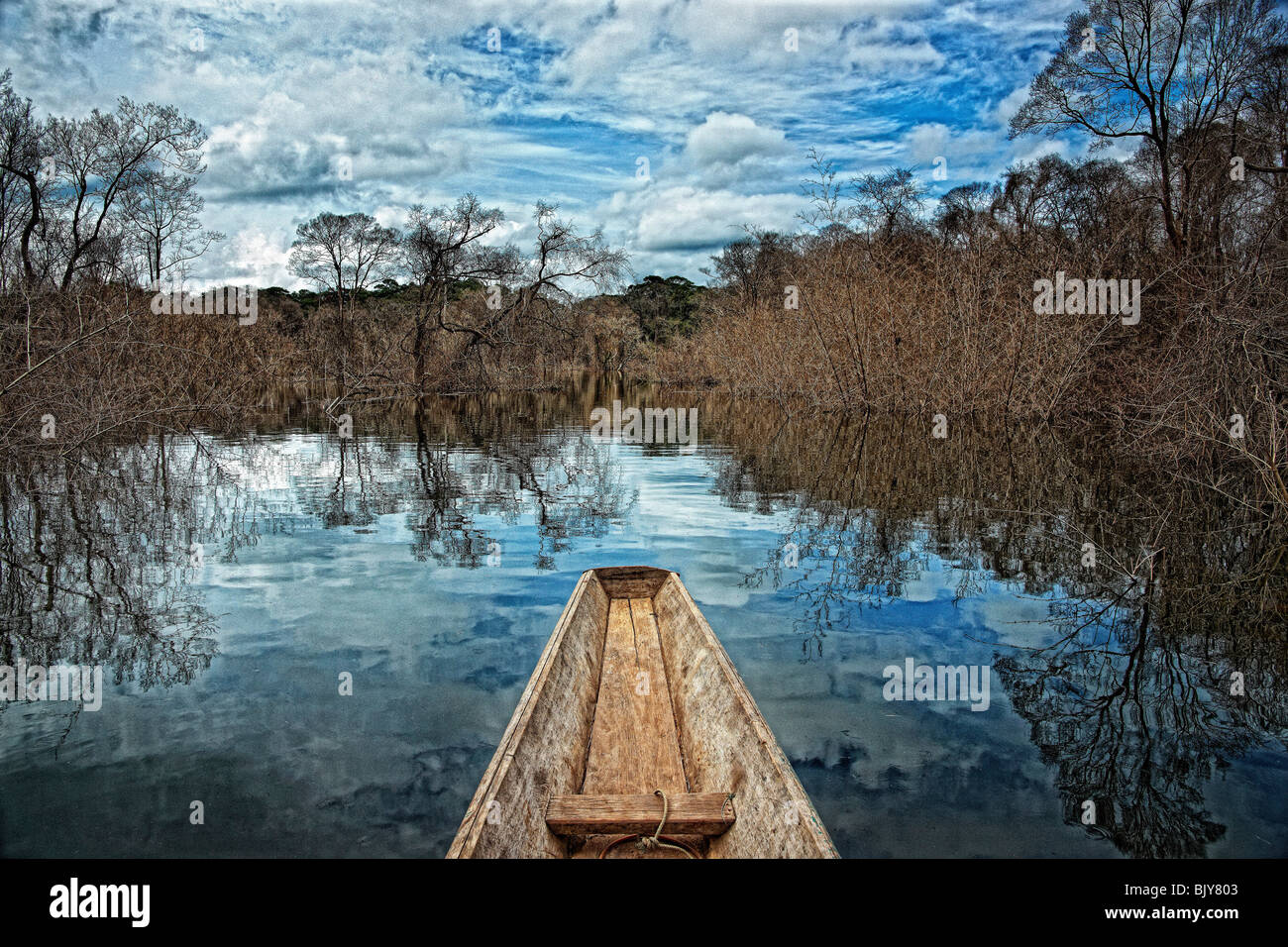 Drowned forest in dam reservoir, Khammouane Province, Laos - Stock Image