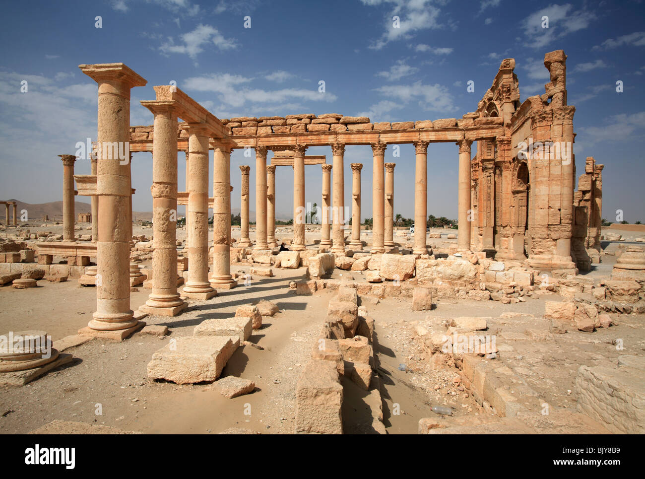Colonnade at the ruins of Palmyra, Syria - Stock Image
