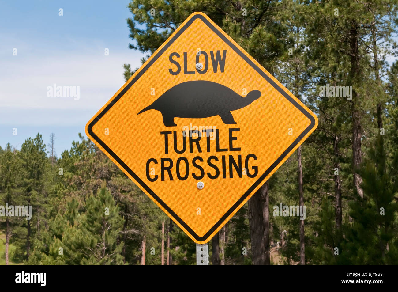 Slow Turtle Crossing >> Turtle Crossing Sign Stock Photos Turtle Crossing Sign Stock