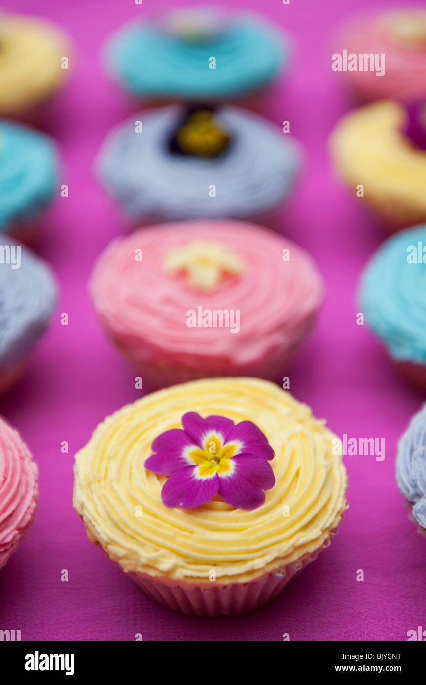 Edible spring flowers stock photos edible spring flowers stock colourful cupcakes and edible spring flowers stock image mightylinksfo