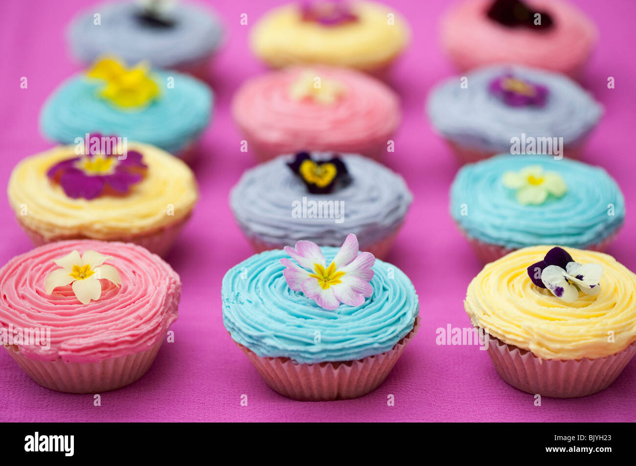 Colourful cupcakes and edible spring flowers stock photo 28880267 colourful cupcakes and edible spring flowers mightylinksfo
