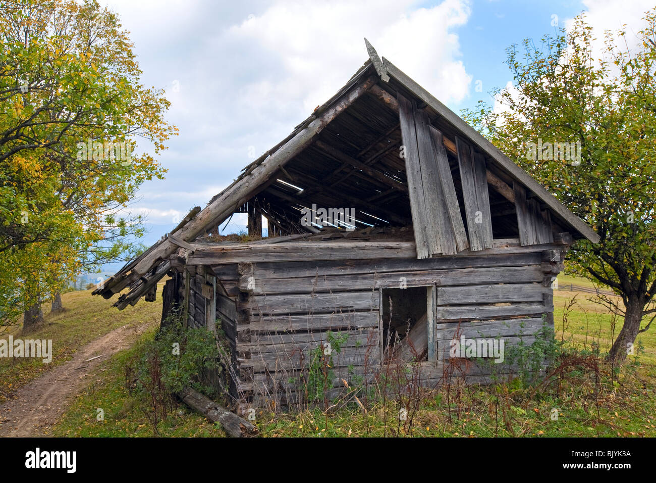 Ruined wood shed on mountain glade - Stock Image