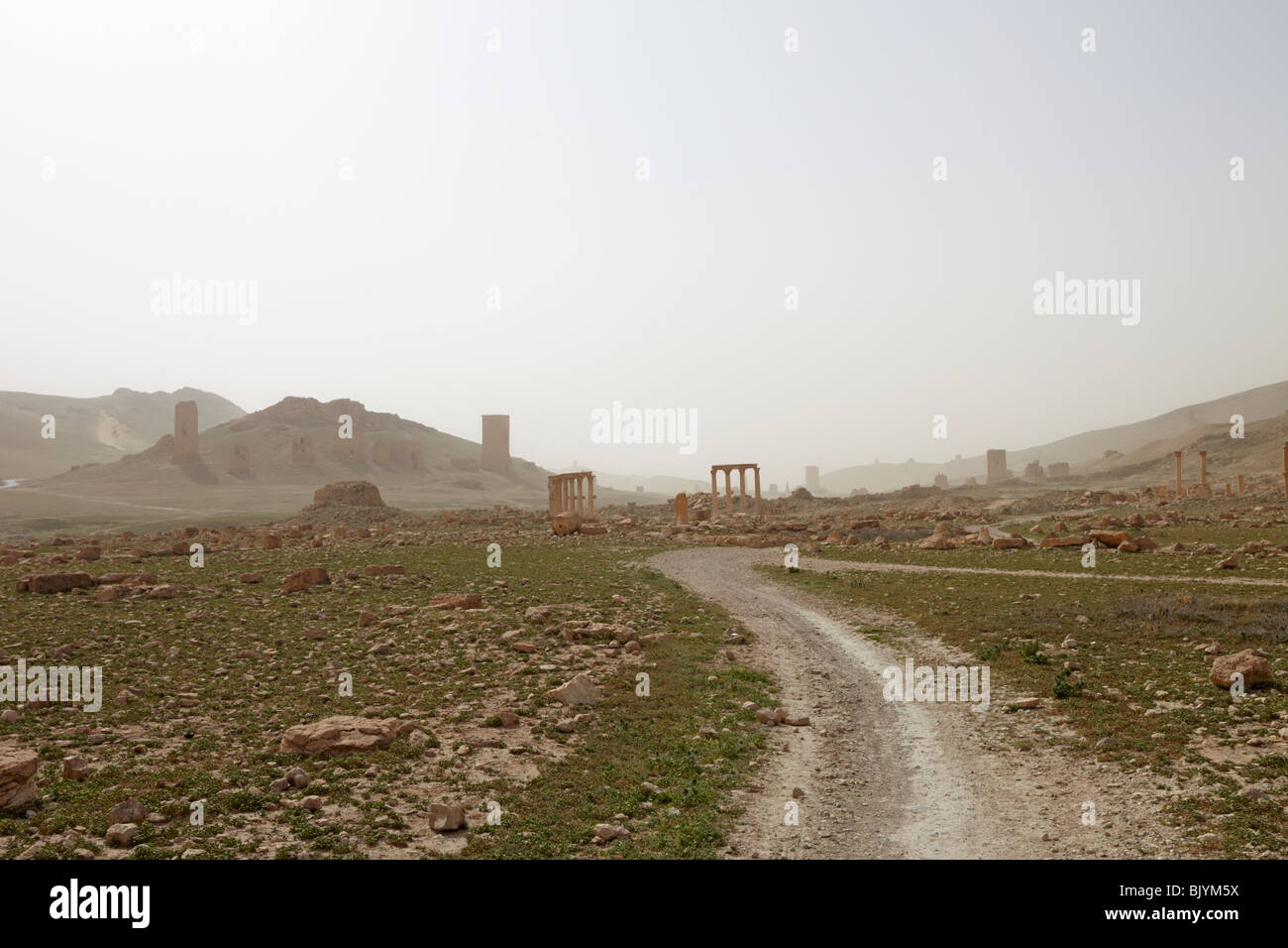 Syria Palmyra valley of the tombs - Stock Image