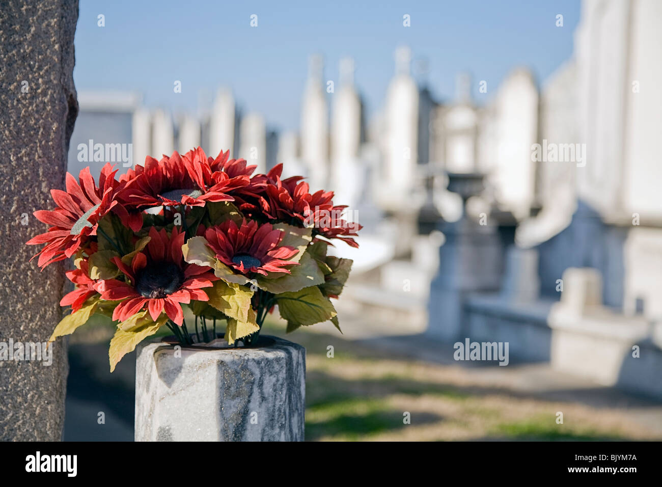 Flowers and tombstones stock photos flowers and tombstones stock red silk flowers next to a headstone in a cemetery in new orleans background a mightylinksfo