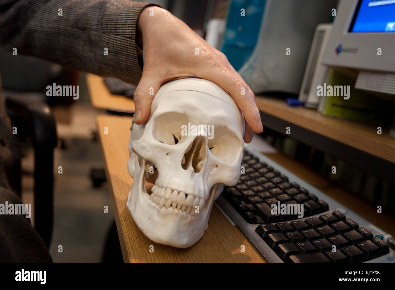 skull and computer  keyboard. - Stock Image