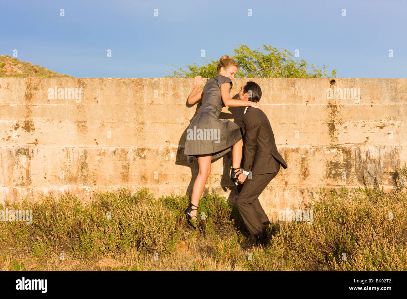 Looking over the wall - Stock Image