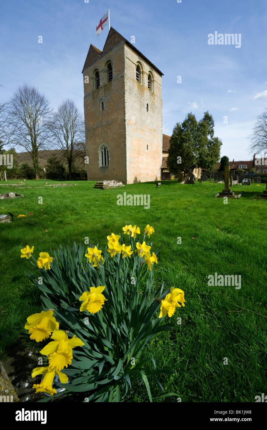Spring Daffodils in the church grounds of St Bartholomew Fingest village Buckinghamshire UK - Stock Image