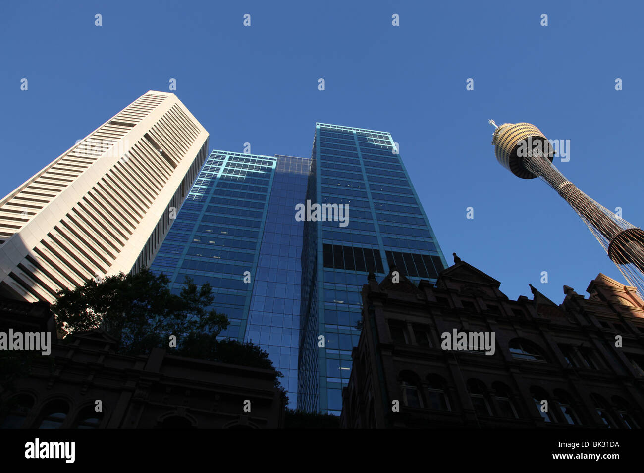 Sydney Tower, MLC Centre and other CBD buildings in the late afternoon sunshine. - Stock Image