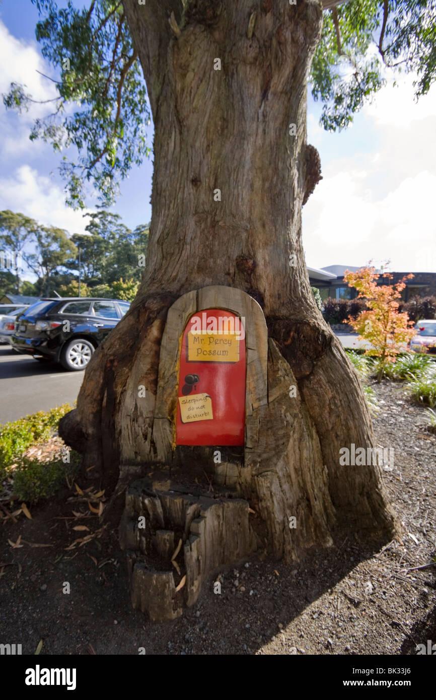 Percy Possum's home in a tree at Mt Dandenong, Victoria, Australia. Funny door in a tree trunk recalls a children's - Stock Image