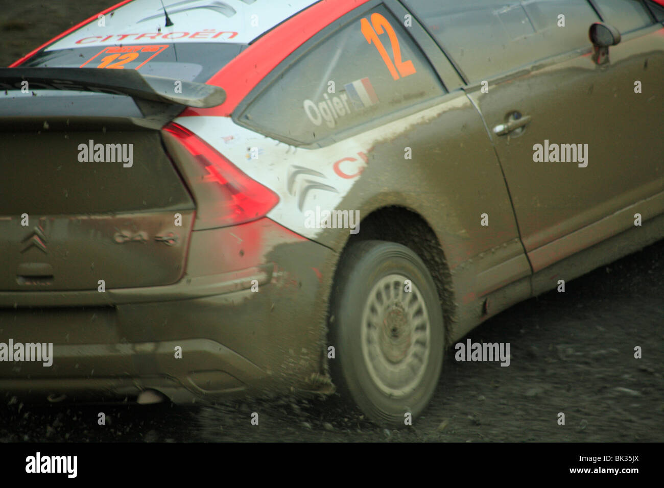 Competitor in the World Rally Championship special stage held in the Hafren Forest, near Llanidloes, Powys, Wales. - Stock Image