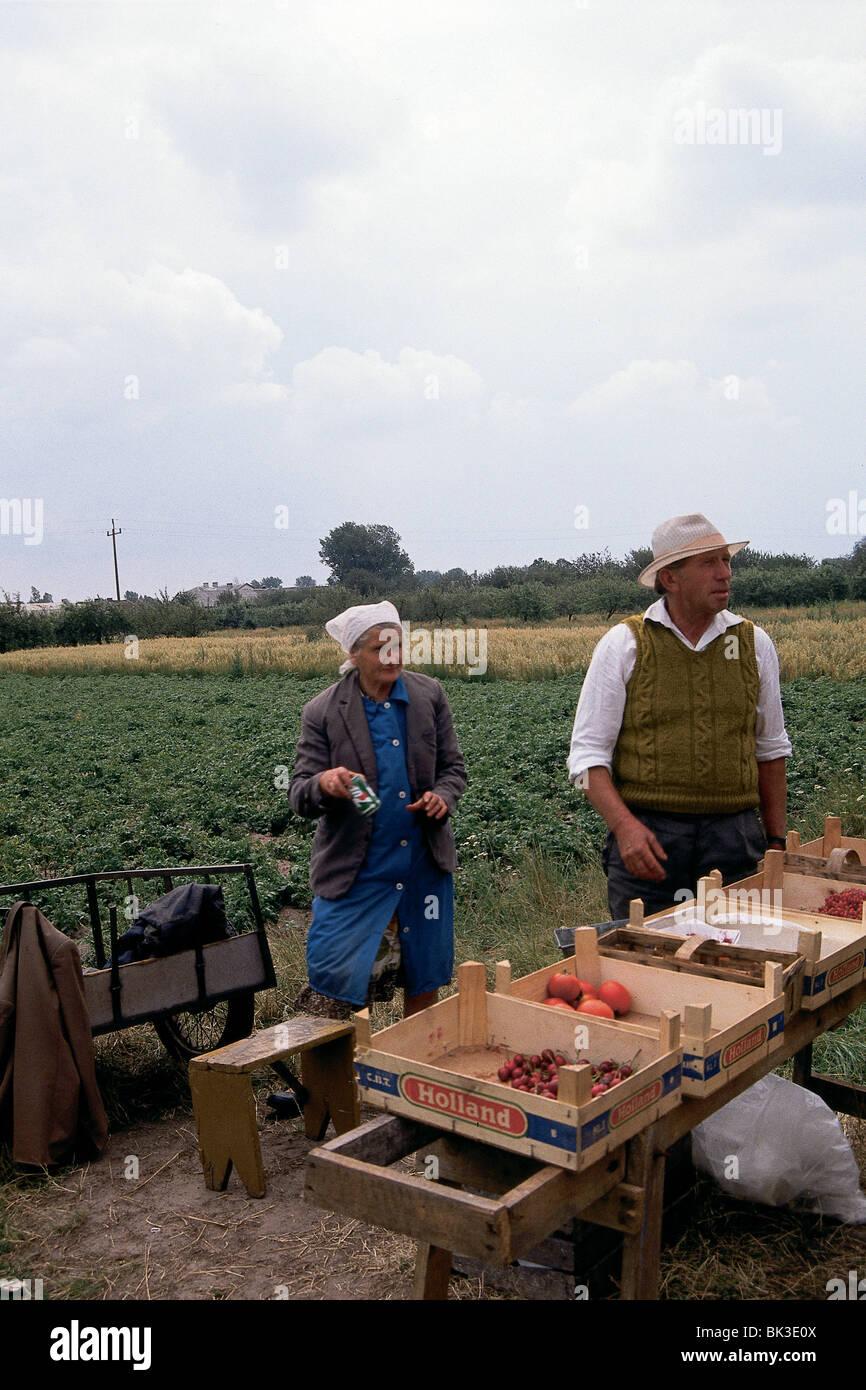Polish fruit and vegetable stand, Poland - Stock Image