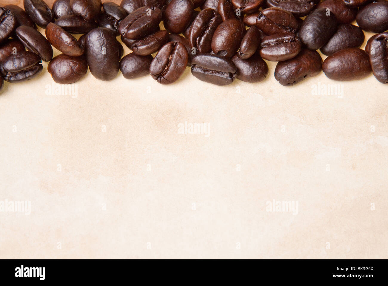 coffee beans on a parchment paper background - Stock Image