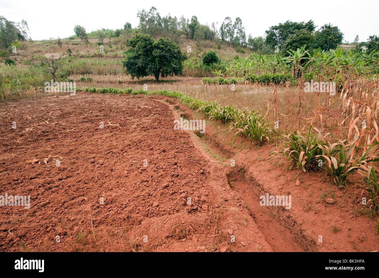 Prevent Soil Erosion Stock Photos Amp Prevent Soil Erosion