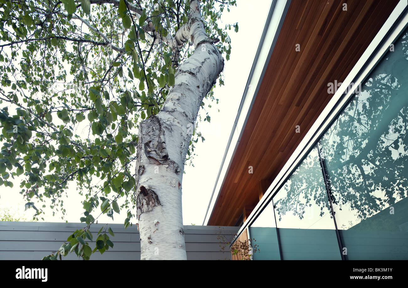 Architectural detail, contemporary house - Stock Image