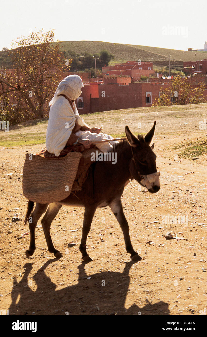 An adult riding a donkey in the Meknes-Tafilalet Region, Morocco - Stock Image
