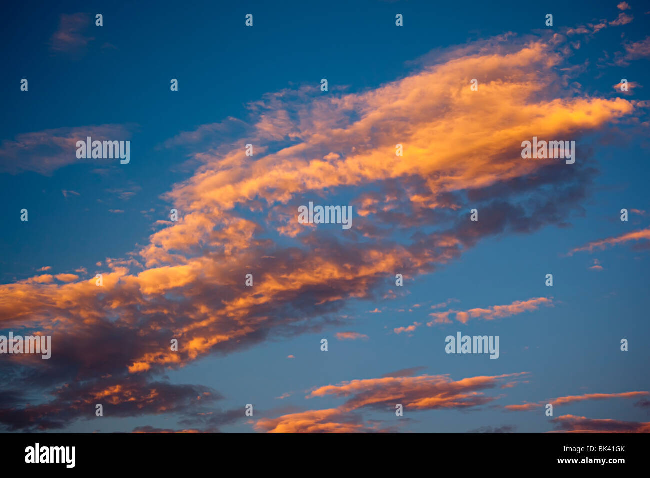 Pink clouds in sunset against blue sky - Stock Image