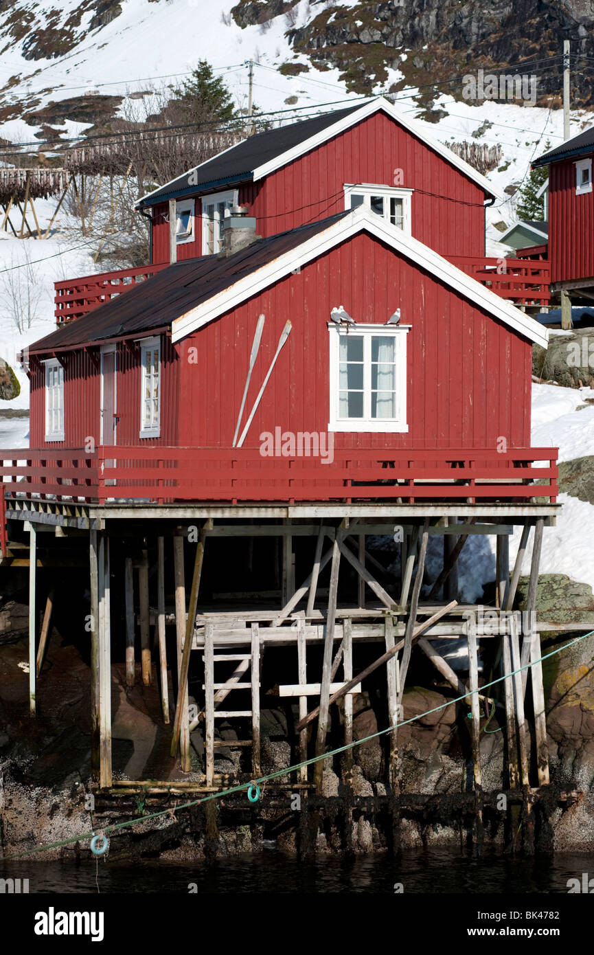 Traditional red wooden Rorbu fishermen`s huts in village of Å on Moskenesoya Island in Lofoten Islands in Norway - Stock Image
