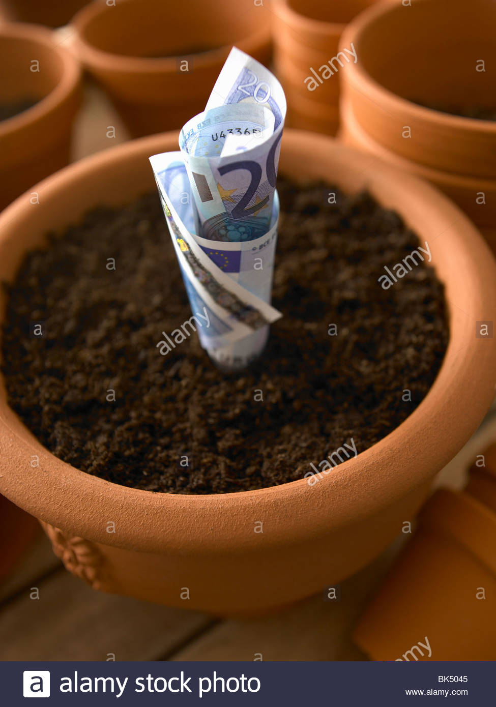 Roll of twenty Euro banknotes growing in flowerpot - Stock Image