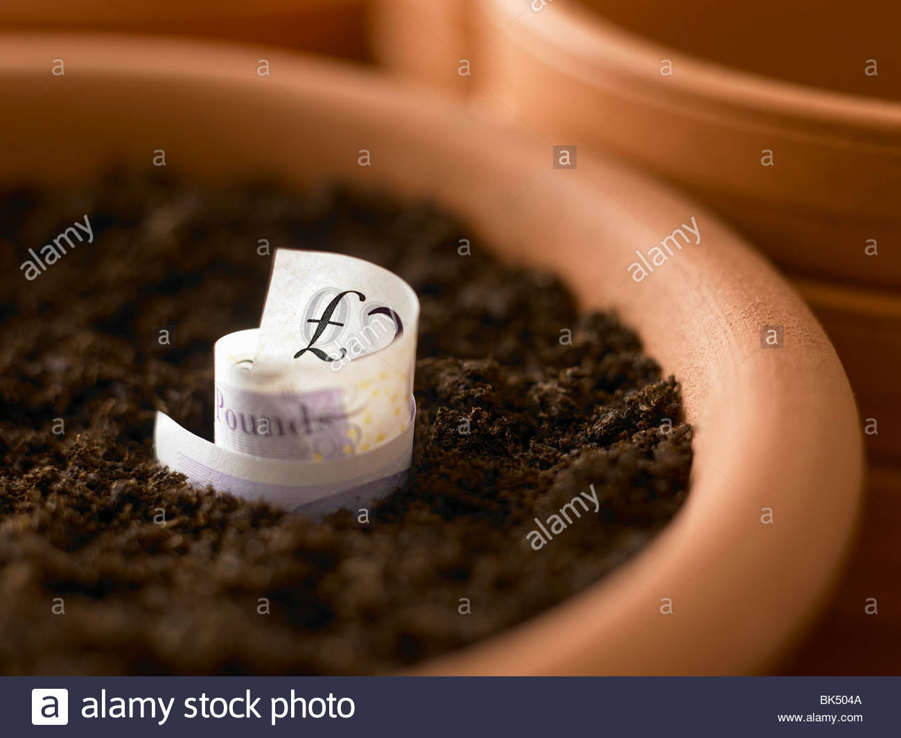 Roll of twenty pound notes growing in flowerpot - Stock Image